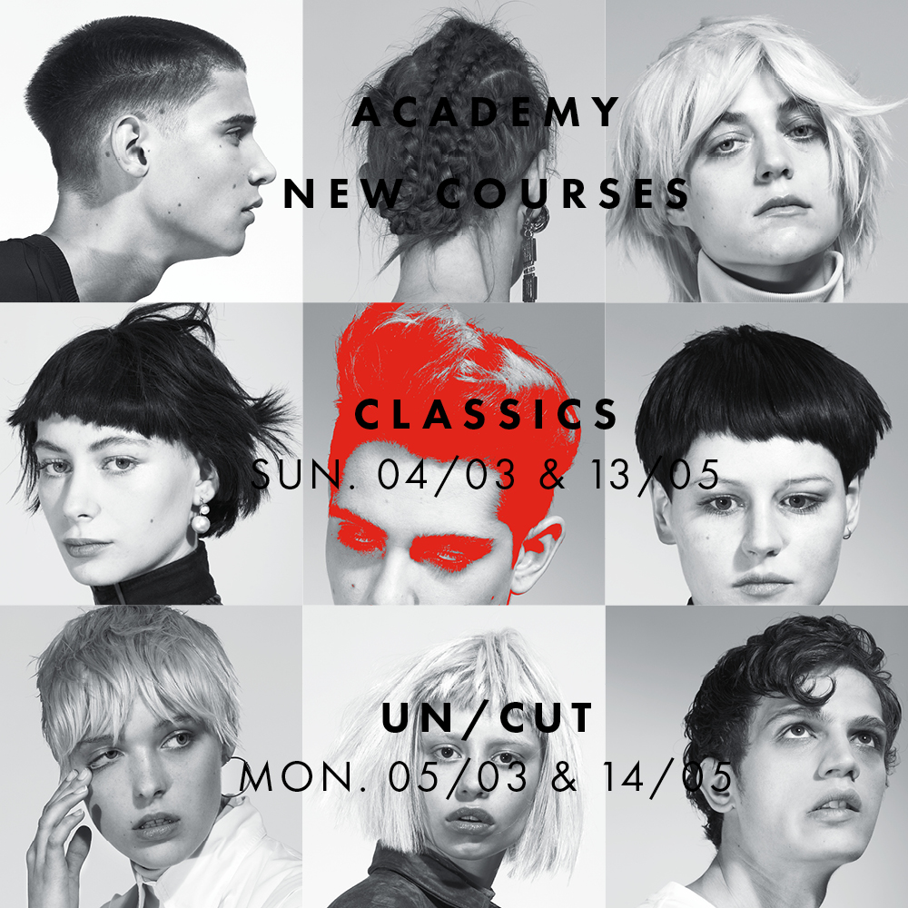 academy new courses front